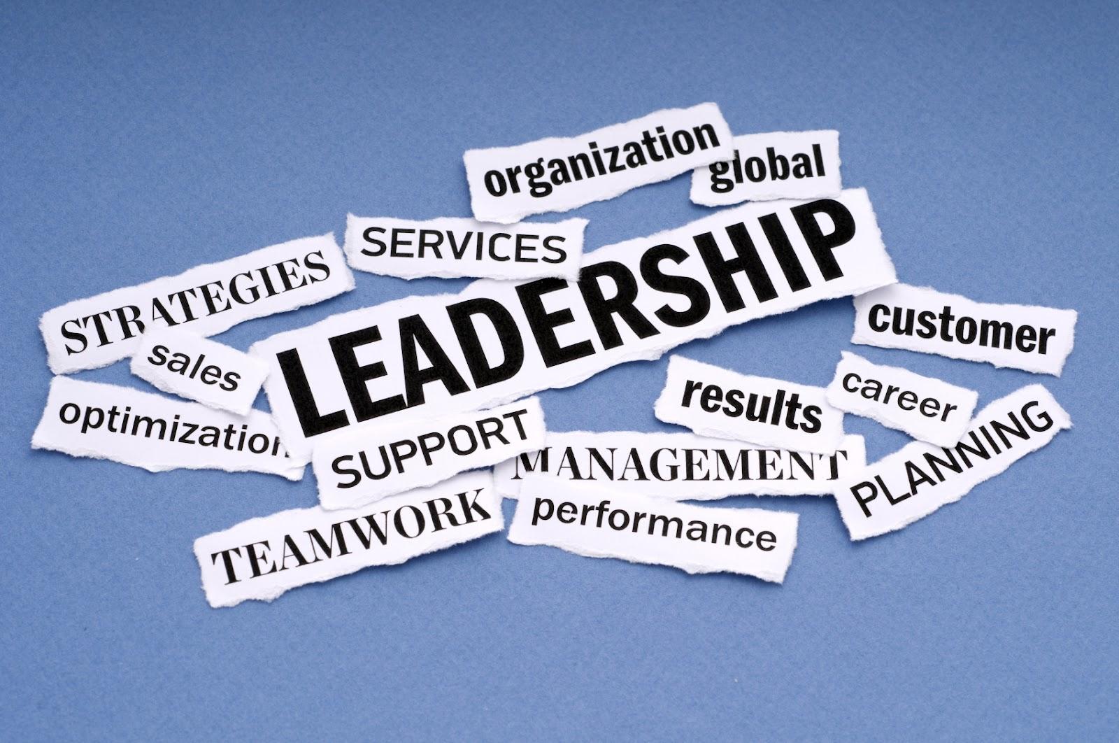 pelatihan kepemimpinan kubik training