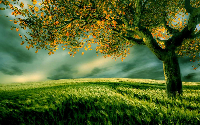 Perbuatan, Energi Alam dan Balasan